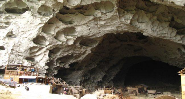 ژانگ دانگی ها، غارنشینان امروز