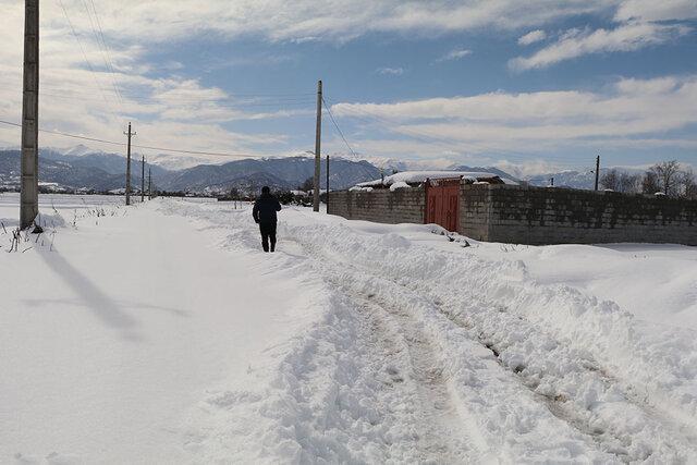 70درصد خانوارهای شهرستان املش برقدار شدند