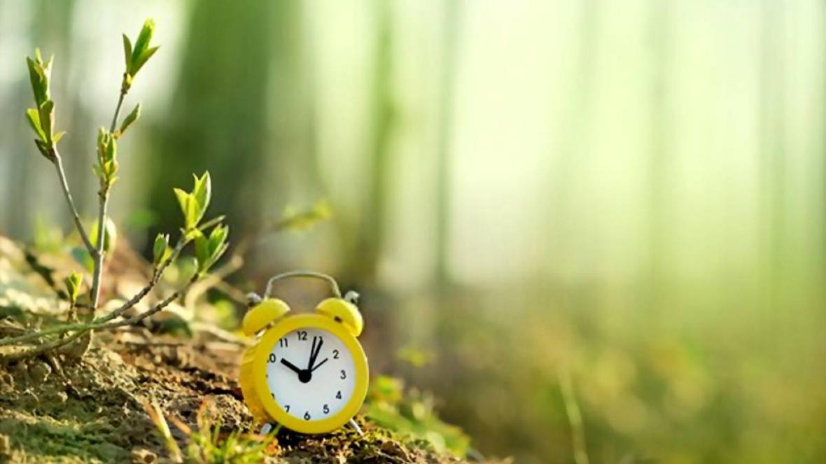بهترین زمان کاشت نهال و درخت در ایران چه موقع است؟!