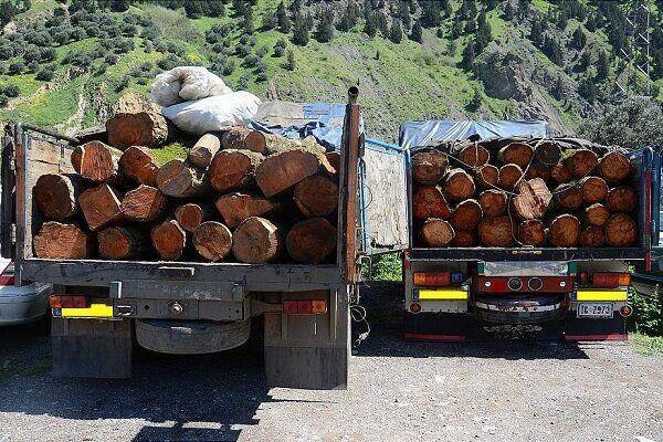 خبرنگاران کشفیات چوب جنگلی قاچاق در خلخال افزایش یافت