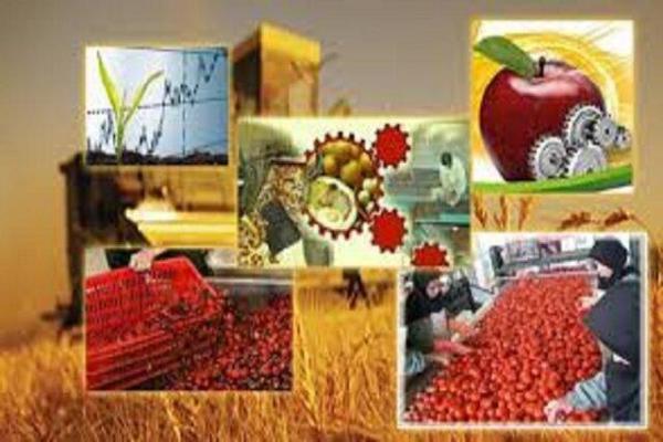 90درصد محصولات خراسان شمالی فروشی می گردد، نبود دام مولد تاماه های آینده در صورت ادامه شرایط نهاده