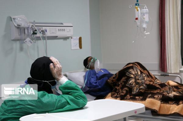 خبرنگاران 88 بیمار جدید مبتلا به کرونا در استان همدان شناسایی شدند