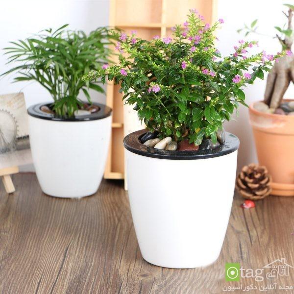 مدل گلدان با قابلیت آبدهی اتوماتیک به گیاهان مناسب آپارتمان
